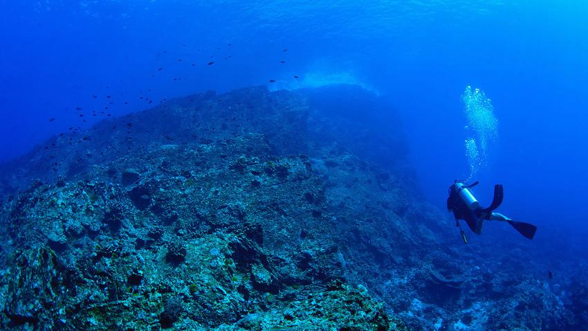 Similan Islands rock diving